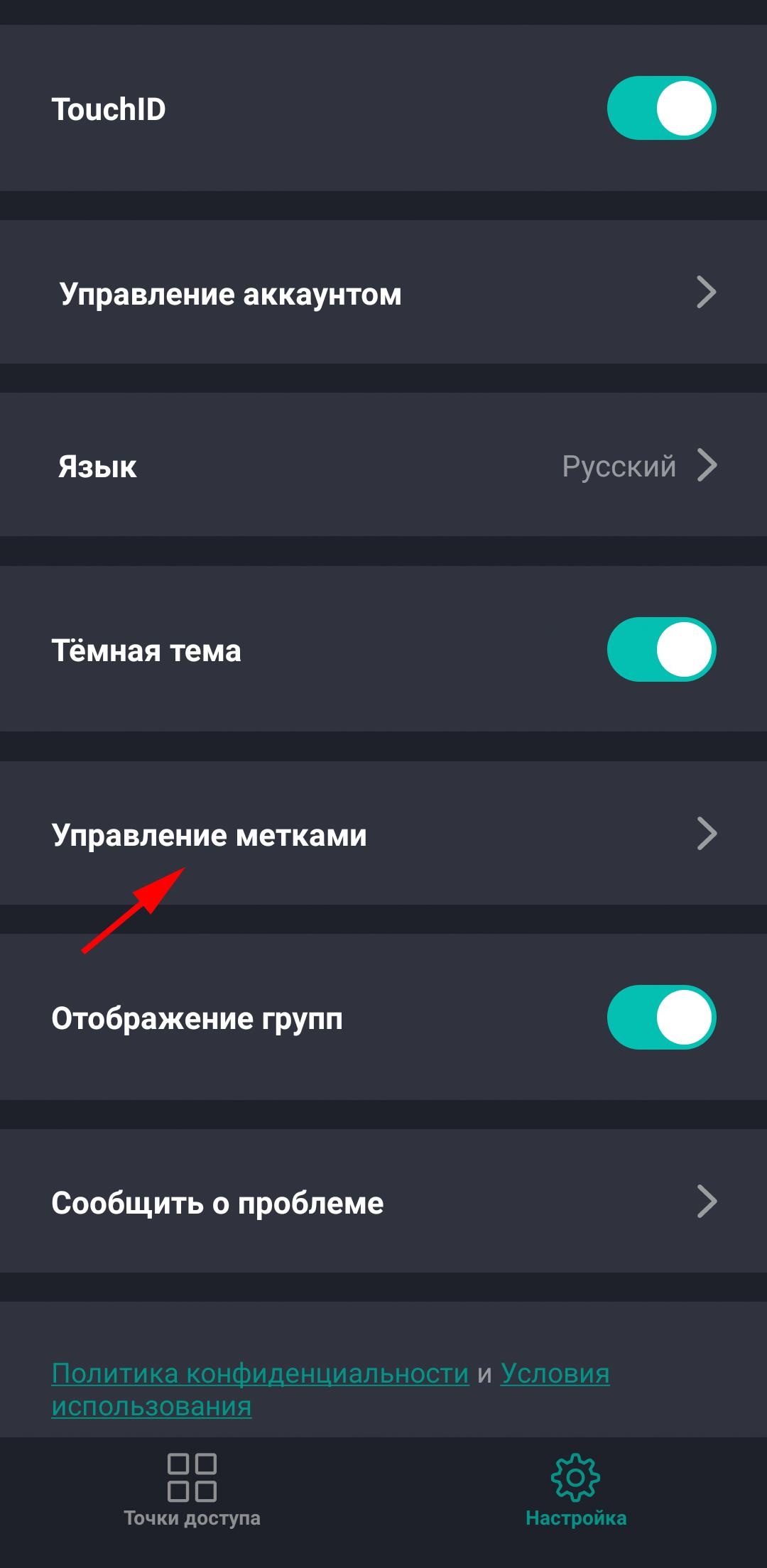 """Раздел """"Настройки"""" приложения Пропускатор"""